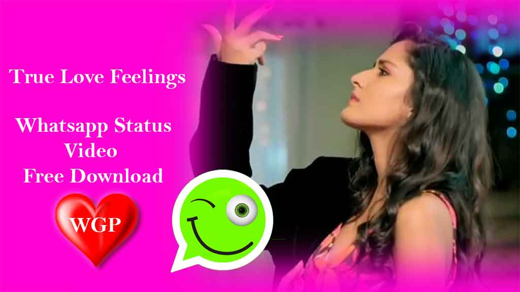 True Love Feelings WhatsApp status💝 video Download😘 cute couple status😍 Punjabi 30Sec by WGP